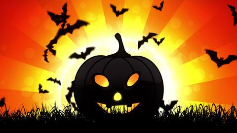 Halloween Pumpkin in Orange Background Animation