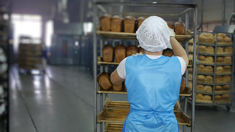 baking bread, the worker takes ready fresh bread for sale Footage