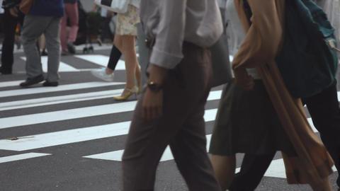 People walking on the crosswalk (Slow Motion Video) Shibuya in Summer Footage