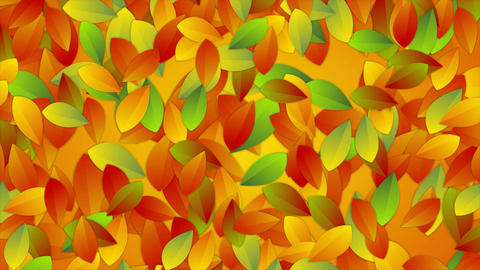 Bright autumn leaves abstract video animation Animation