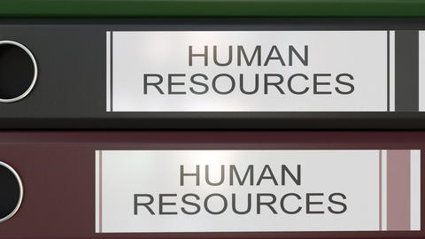 Vertical stack of multicolor office binders with Human resources tags Footage