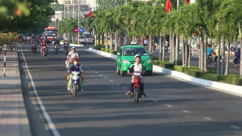 cyclists motorcyclists buses drive along road divided by palms Footage