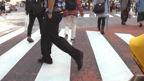 People walking on the crosswalk (Slow Motion Video) Shibuya in Summer ライブ動画
