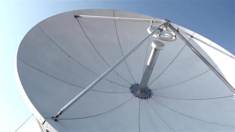 Satellite Dish Acción en vivo