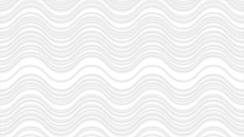 Abstract grey white wavy lines video animation Animation