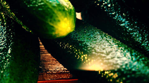 Wet green cucumbers on a wooden table Footage