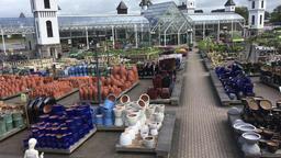 English garden centre UK Footage