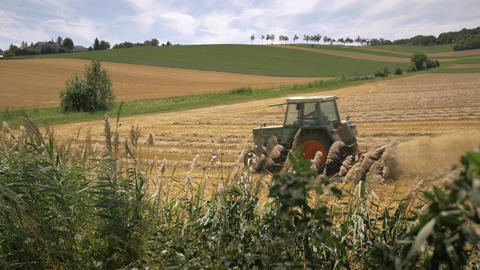 Tractor plows wheat field after the harvest Footage