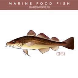 Seafood Vectors 0