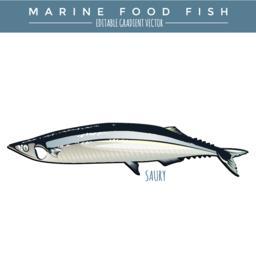 Seafood Vectors 2