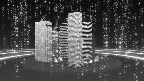 SHA White City Cyber BG Image Animation