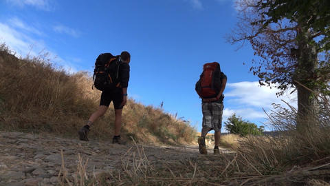 Two Boys Who Are Hiking, Going On A Mountain Road In A Sunny Summer Day 6h stock footage