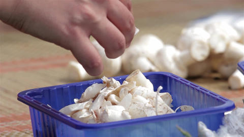 Womens Come To Picnic Clean Mushrooms, Preparing Lunch For Your Loved Ones 2 stock footage