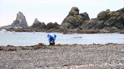 Kelp farmer on the beach ビデオ