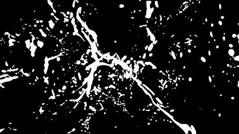 Paint Splash Explosion. Splashing Liquid In Slow Motion. 4K 1