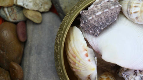Sea Stones And Oyster Shells Around Gold Old Bowl Rotating Live Action