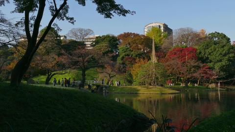 Koishikawa Korakuen Gardens Park Fall Autumn Trees Foliage Tokyo Japan Footage