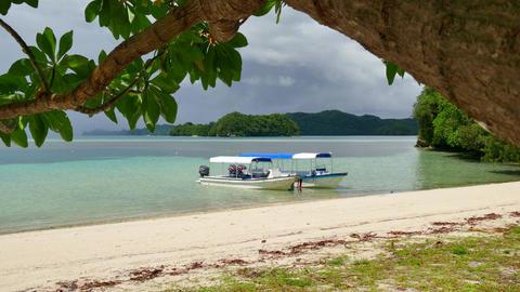 Tourist Boats White Sand Tropical Paradise Beach Palau Island Sea Footage