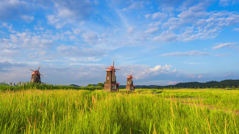 Timelapse of Old wooden mills the field in the park,south korea ビデオ