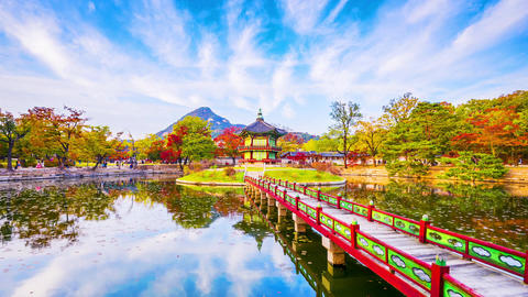 Time lapse Autumn of Gyeongbokgung Palace in Seoul ,Korea Footage