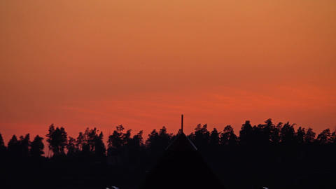 Silhouette of summer forest trees against orange sunset sky Footage