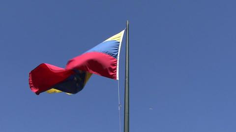 Venezuela Flag Footage