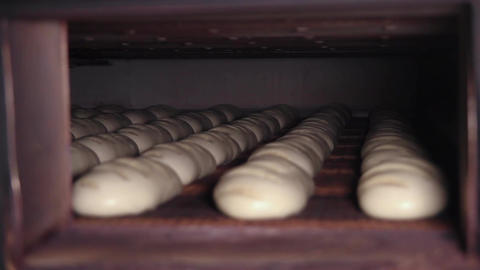 Raw bread moves in the furnace along the conveyor Live Action