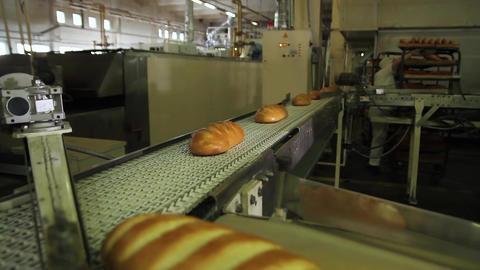 Bakery worker feeds bread on a conveyor belt Footage