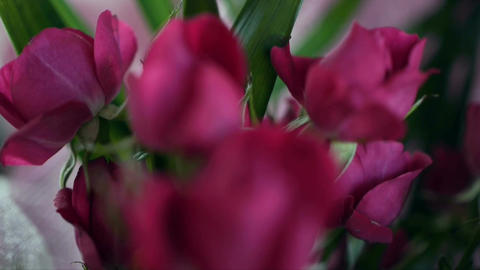 Bouquets in a flower shop, dolly shot Stock Video Footage