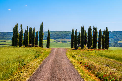 Tuscan countryside in springtime Foto