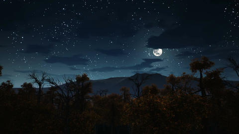 Full moon over spooky forest at Halloween night Stock Video Footage