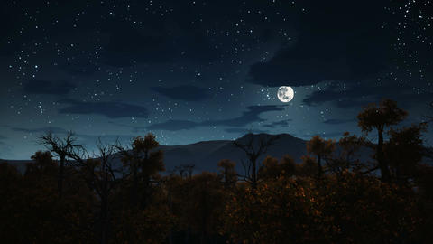 Full moon over spooky forest at Halloween night Animation