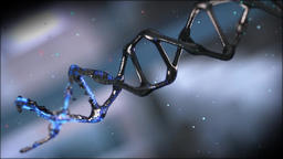 DNA(C4D&AE) Archivo