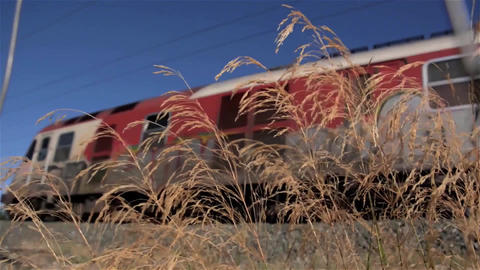 Passing a high speed train seen among high dry grass 30 Footage