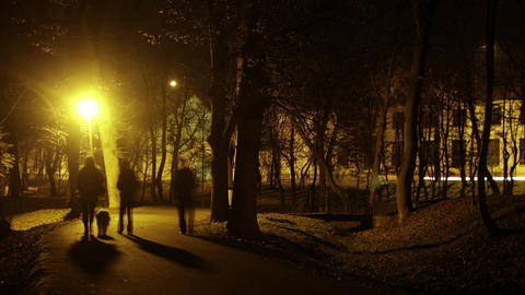 People walk in the park at night by the light of lanterns Timelapse 8a Footage