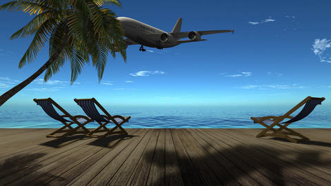 Air travel on the sea, palm trees, beach, relaxation Animation