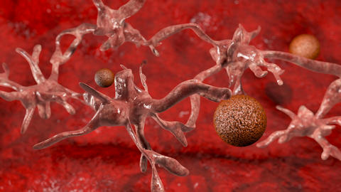 Cancer cell with high details Animation