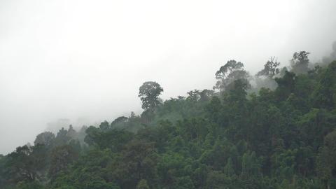 fog and hazy sky over mountain Footage