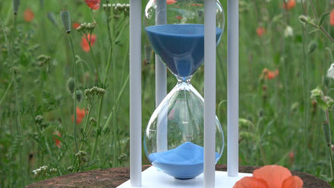 Hourglass with blue sand motion and poppy blossoms ビデオ