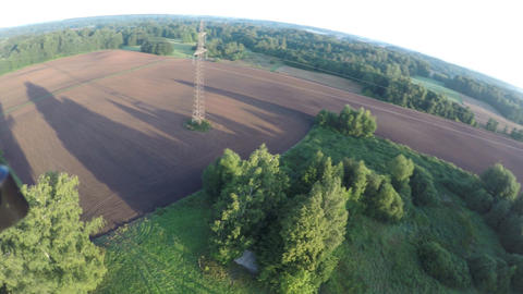 Drone rotating over autumn sowed fields and trees in morning, aerial view Footage