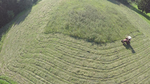 Small retro tractor cut haying grass from summer end meadow in farmland Footage