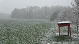 Late spring snow falling on wheat field and old wooden table, slow motion ビデオ