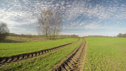 Beautiful spring crop field and clouds motion, time lapse Archivo