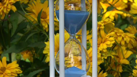 Blue sand falling in new wooden hourglass and flowers background Footage