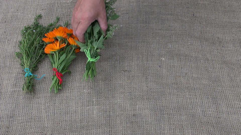 fresh various medical healing herbs bunch on linen cloth Footage