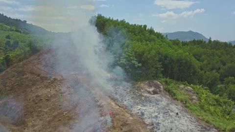 Smoke from Controlled Fire Rises above Road in Highland Footage