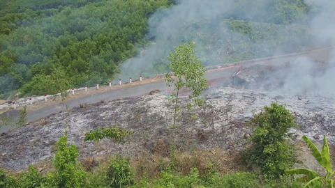 Close View Burnt Ground Plot with Ash and Smoke by Road Footage