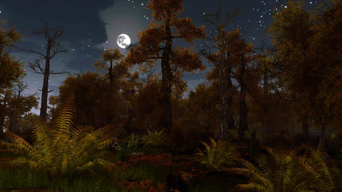 Scary dark autumn forest at full moon night Image