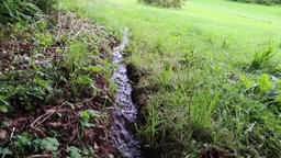 Mini stream in a field UK Image