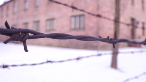 Walk along old rusty barbed wire fence of concentration camp Footage